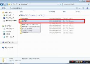 X79R7INS119